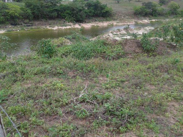 Fazenda em monte alegre, 30 há. duas casas, poço, curral, rio, galpão - Foto 20