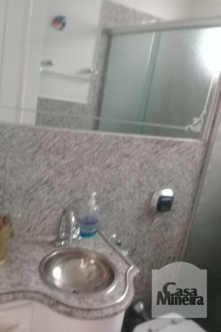 Casa à venda com 3 dormitórios em Alto caiçaras, Belo horizonte cod:214233 - Foto 6
