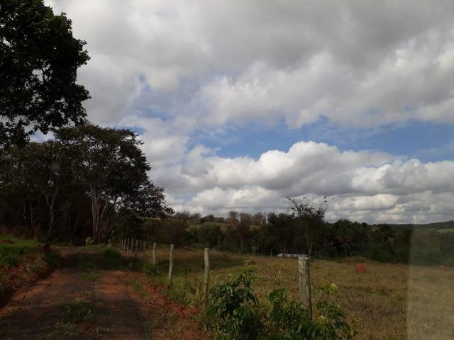 Vendo sitio 2 hectares (20.000 m2) - Foto 6