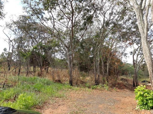 Vendo sitio 2 hectares (20.000 m2) - Foto 20