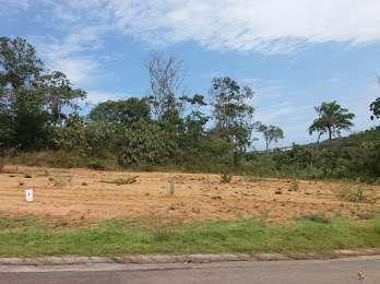 Terreno com 377 m² - Abrantes - Foto 3