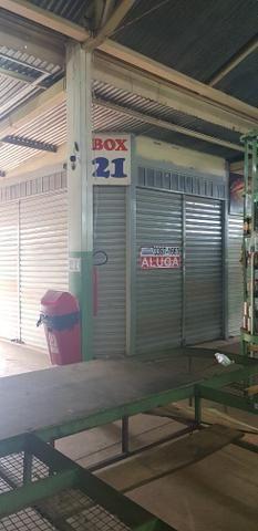 Box na feira do Produtor de Vicente Pires