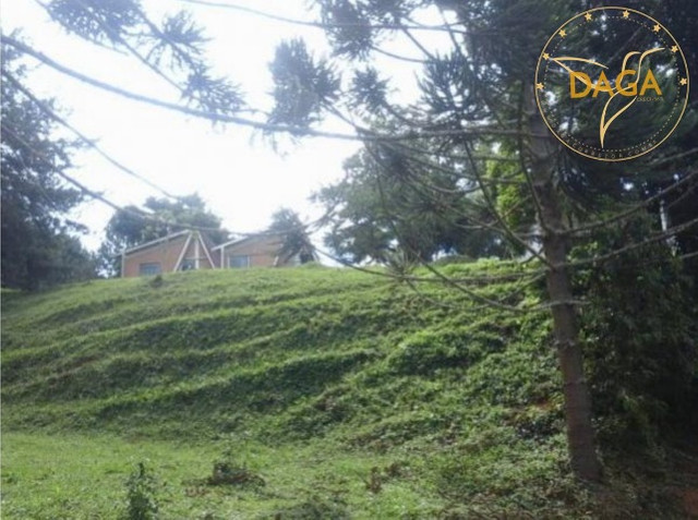 Fazenda a venda em Minas Gerais-Carvalhos - Foto 9