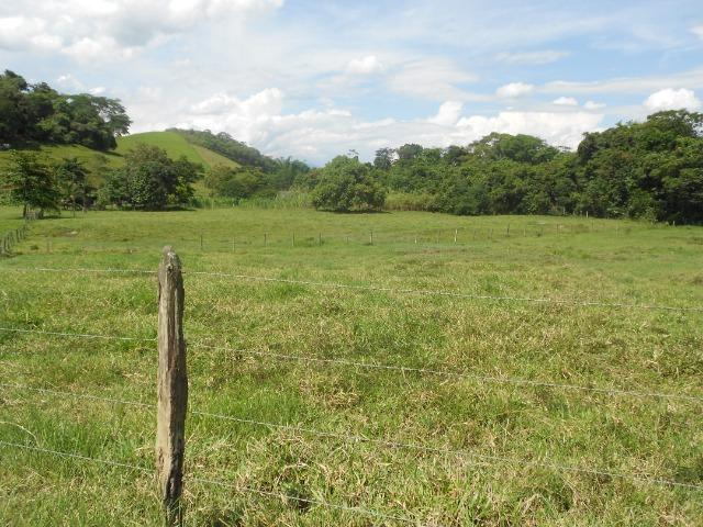 Jordão corretores - Fazenda 22 alqueires Cachoeiras de Macacu porteira fechada - Foto 2