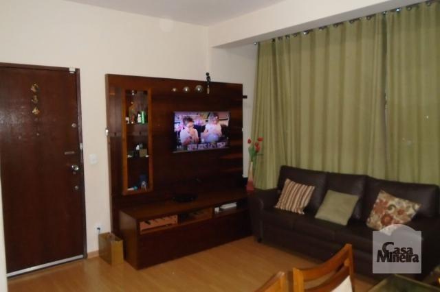 Apartamento à venda com 3 dormitórios em Jardim américa, Belo horizonte cod:225045 - Foto 2