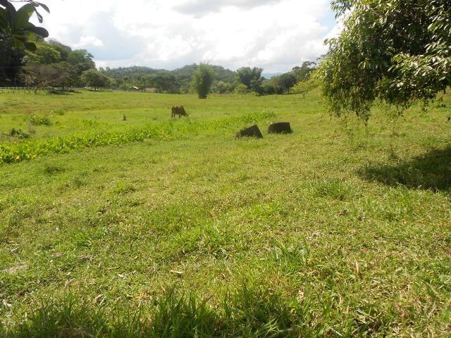 Jordão corretores - Fazenda 22 alqueires Cachoeiras de Macacu porteira fechada