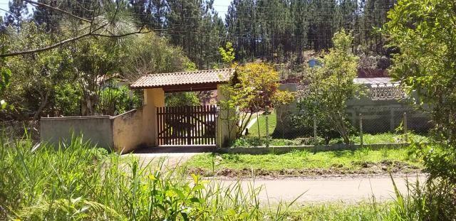 Sitio/ Chácara para Alugar/Palmeiras Suzano - Foto 20