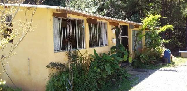 Sitio/ Chácara para Alugar/Palmeiras Suzano - Foto 19
