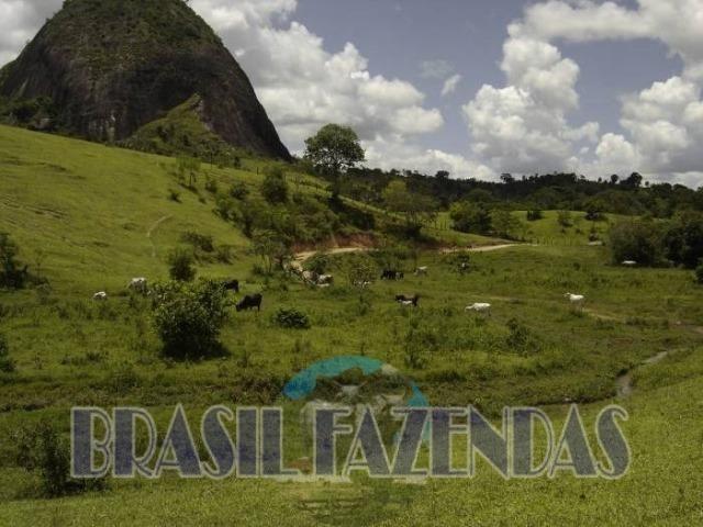Fazenda em Itamaraju. Jucuruçu - Foto 3