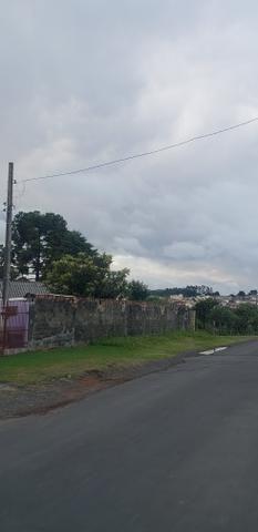 Lote terreno em lages SC bairro Guarujá 90 mil - Foto 11
