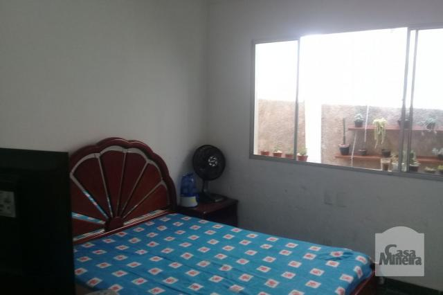Casa à venda com 3 dormitórios em Alto caiçaras, Belo horizonte cod:214233 - Foto 5