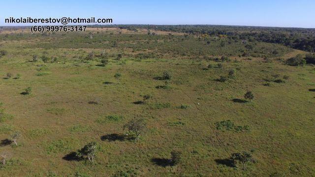 Fazenda 1.090 hectares nordeste mt nikolaiimoveis