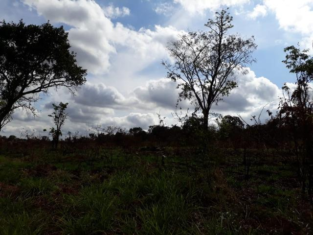 Vendo sitio 2 hectares (20.000 m2) - Foto 8