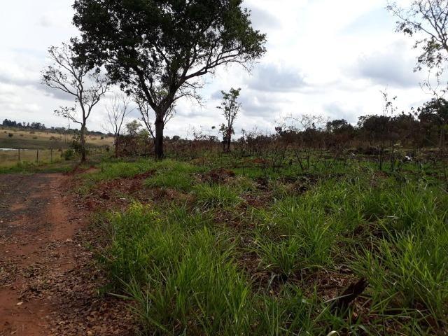 Vendo sitio 2 hectares (20.000 m2) - Foto 9