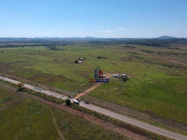 Fazenda na beira da BR 364 próximo à Cacoal - Foto 16
