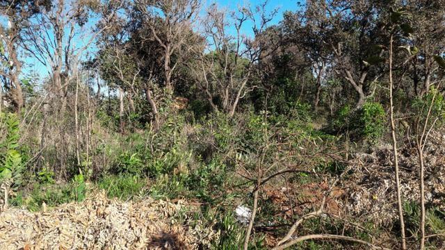 Terreno quitado 15 x 40 b. jardim atlantico ( 16.000,00 )