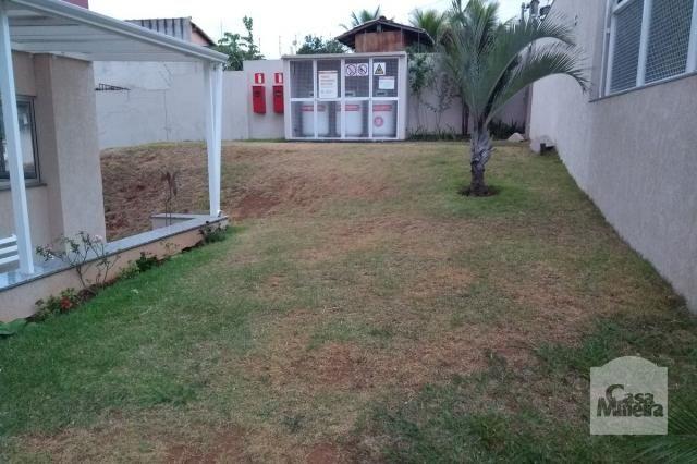 Apartamento à venda com 2 dormitórios em Caiçara-adelaide, Belo horizonte cod:248923 - Foto 17