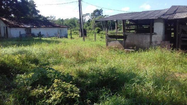 Sítio no Pará,20 hectares com pasto, curral, casa ,igarape por 250 mil reais - Foto 8