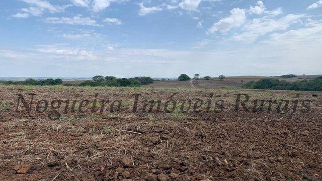 Fazenda com 72 alqueires na região de Itapetininga (Nogueira Imóveis Rurais) - Foto 8