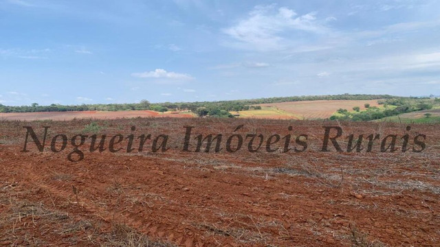 Fazenda com 72 alqueires na região de Itapetininga (Nogueira Imóveis Rurais)