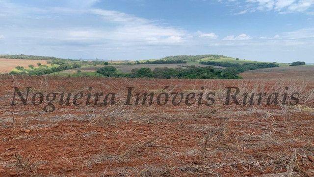 Fazenda com 72 alqueires na região de Itapetininga (Nogueira Imóveis Rurais) - Foto 17