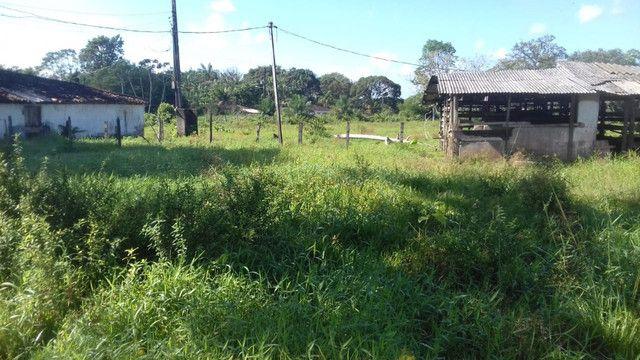 Sítio no Pará,20 hectares com pasto, curral, casa ,igarape por 250 mil reais - Foto 10