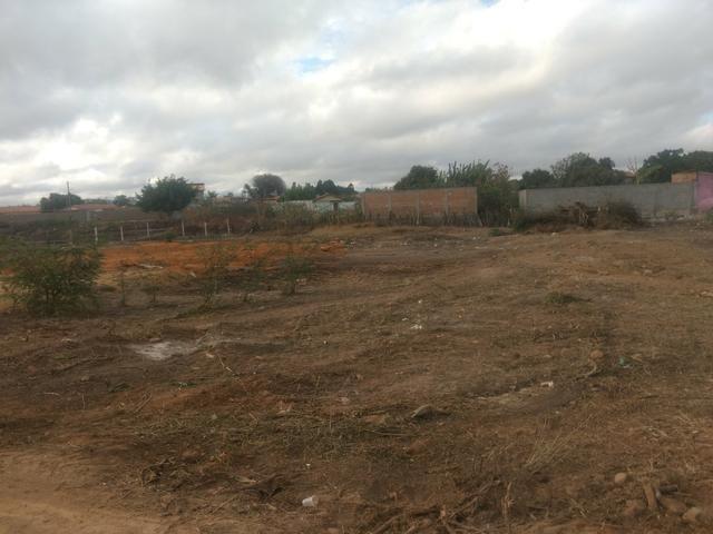 Terreno no Pradoso - Foto 2