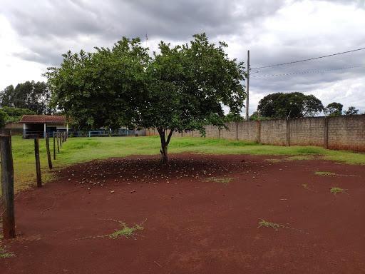 Chácara à venda, 5000 m² por R$ 600.000 - Três Lagoas - Foz do Iguaçu/PR - Foto 3