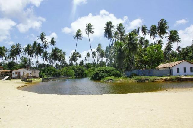 Vendo Área na beira mar da Praia de Pititinga - Foto 10