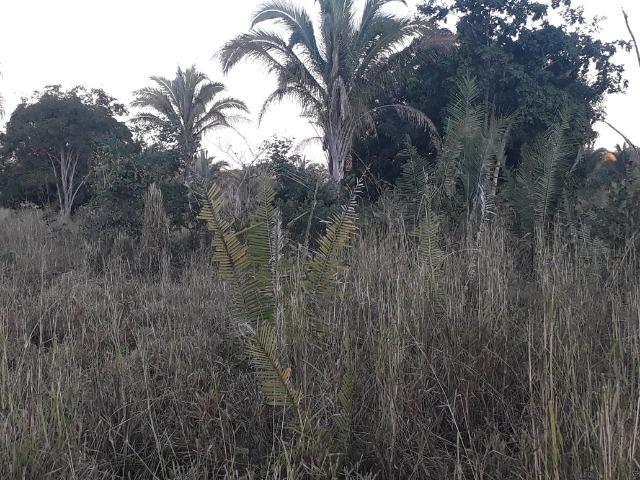 Chácara a 9 km de Acorizal com 38.2 hectares - Foto 9