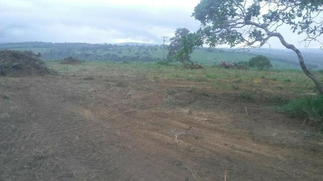 Vendo fazenda de Pecuária com 1.720 hectáres - Foto 17