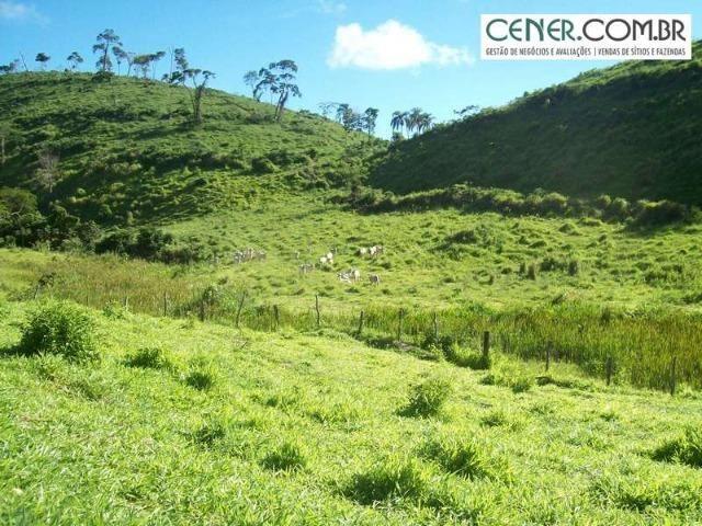 1010/Extraordinária fazenda de 5.199 ha para pecuária - Foto 11