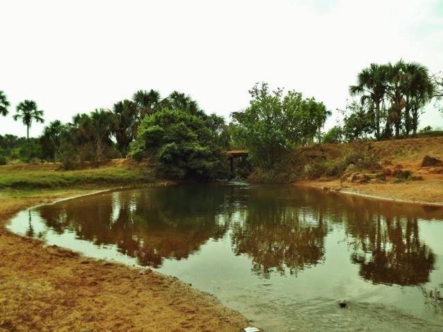 Fazenda de 67 alqueires para lavoura a venda na região de Paraúna GO - Foto 10