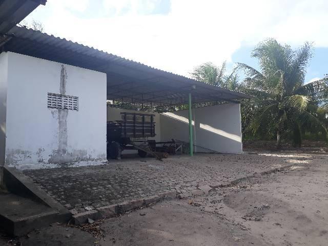 FAZENDA DE COQUEIROS COM EXCELENTE PRODUÇÃO MENSAL ARENA - Foto 19