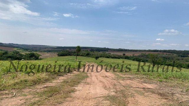 Fazenda com 72 alqueires na região de Itapetininga (Nogueira Imóveis Rurais) - Foto 12