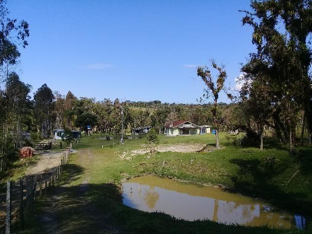 Chácara c/Terreno 6000m2 02 casas * 02 tanques c/ peixes Doc. ok - Foto 7