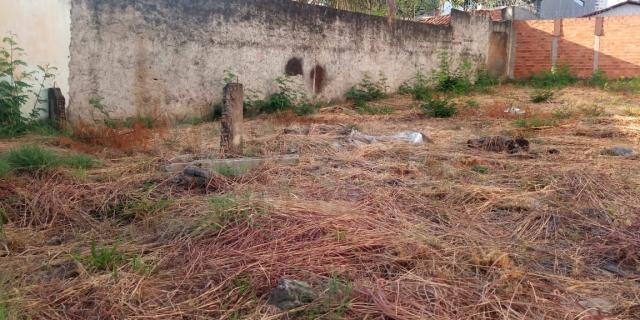 Terreno para alugar em Serrinha, Goiânia cod:620829 - Foto 3