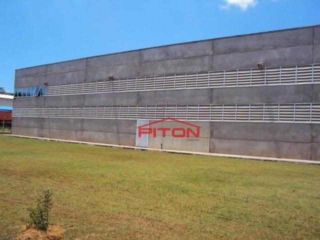 Galpão à venda, 2 m² por r$ 7.500.000 - núcleo industrial vereador alcides celestino filho - Foto 5