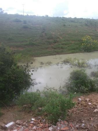 Vendo fazenda de Pecuária com 1.720 hectáres - Foto 4