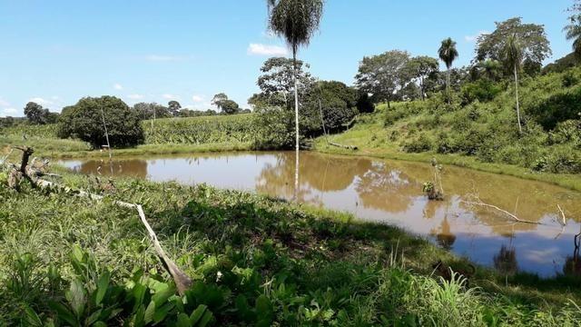 Chácara no município de Cariri do Tocantins - Foto 9