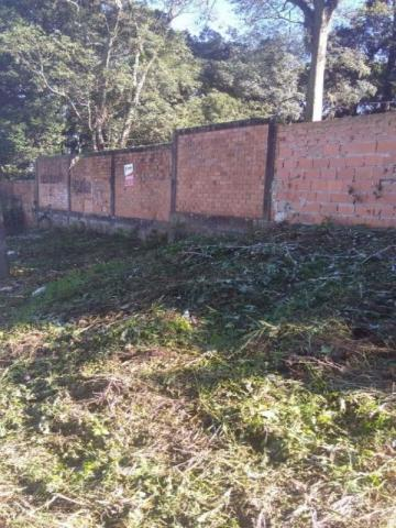 TERRENO RESIDENCIAL À VENDA, PINHEIRINHO, CURITIBA - TE0173. - Foto 6