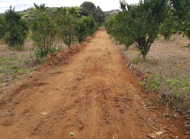 Custeio rural sem fiadores - Foto 6