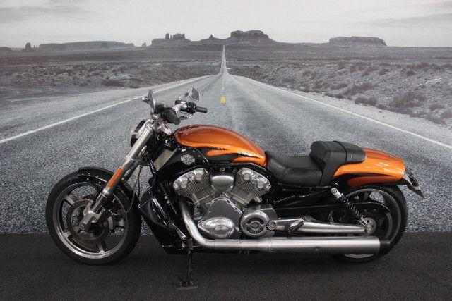 Harley davidson v-rod 1250 muscle vrscf 2013/2014 - Foto 2