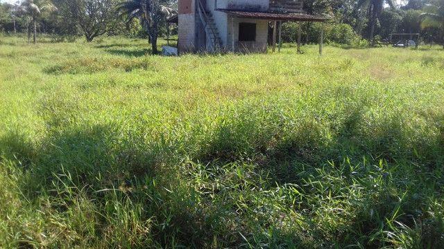 Sítio no Pará,20 hectares com pasto, curral, casa ,igarape por 250 mil reais - Foto 11