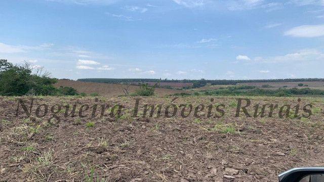 Fazenda com 72 alqueires na região de Itapetininga (Nogueira Imóveis Rurais) - Foto 14