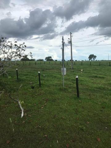 Fazenda 354 hectares, Município de Livramento/MT - Foto 9