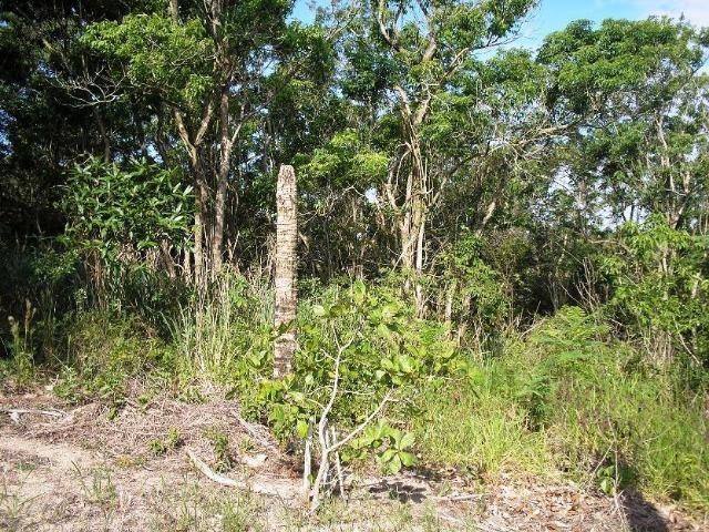 COD-116: Sítio em Bicuiba - Saquarema - Foto 10