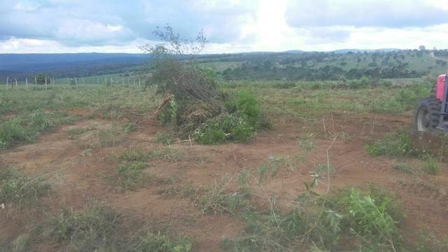 Vendo fazenda de Pecuária com 1.720 hectáres - Foto 18