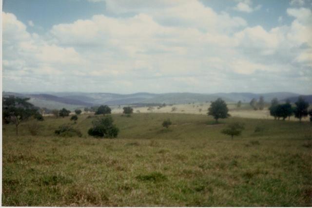 Vendo fazenda de Pecuária com 1.720 hectáres - Foto 2