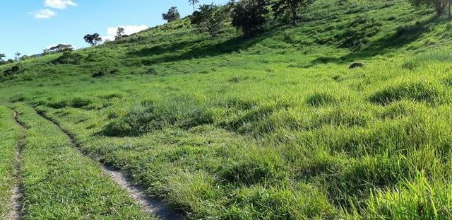 1010/Extraordinária fazenda de 5.199 ha para pecuária - Foto 7